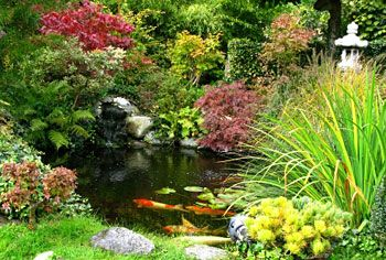 The ideal. . .  read up on non-submersible pumps for the koi pond.
