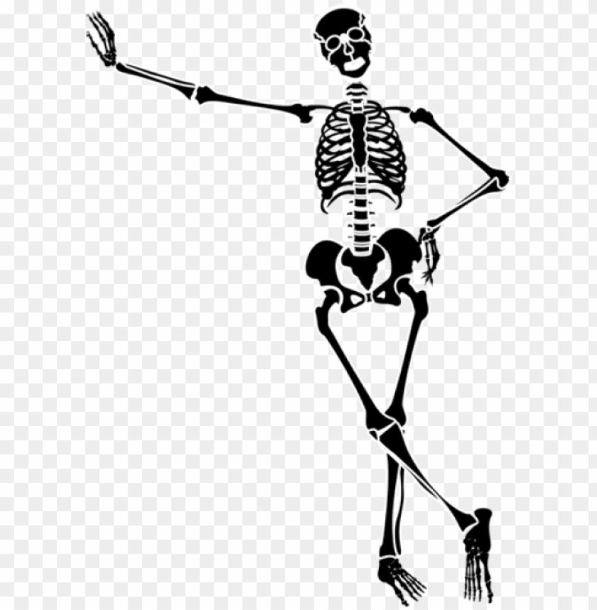 28 Collection Of Halloween Dancing Skeleton Clipart Skeleton Art Transparent Background Png Image With Transparent Background Png Free Png Images Skeleton Art Clip Art Transparent Background