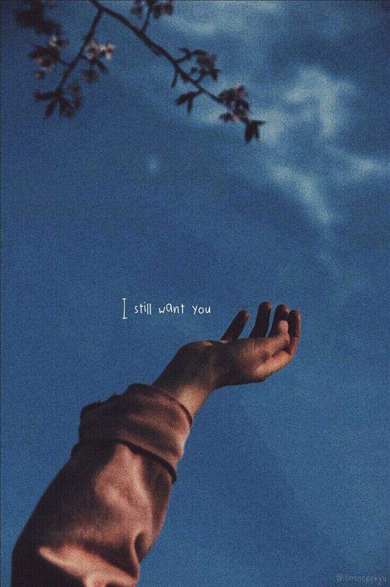 Pin Oleh Lilly Milene Di Quotes Gambar Fotografi Inspirasional