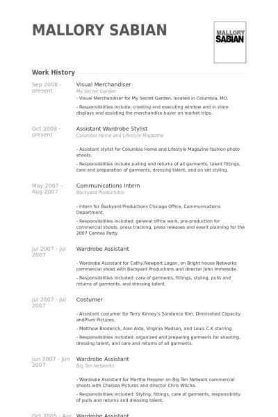 Visual Merchandiser Resume Example