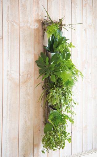 do it yourself cadre v g tal gardening jardinage. Black Bedroom Furniture Sets. Home Design Ideas