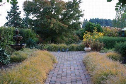 Eamonn's garden in Oregon--Click through to read more ...
