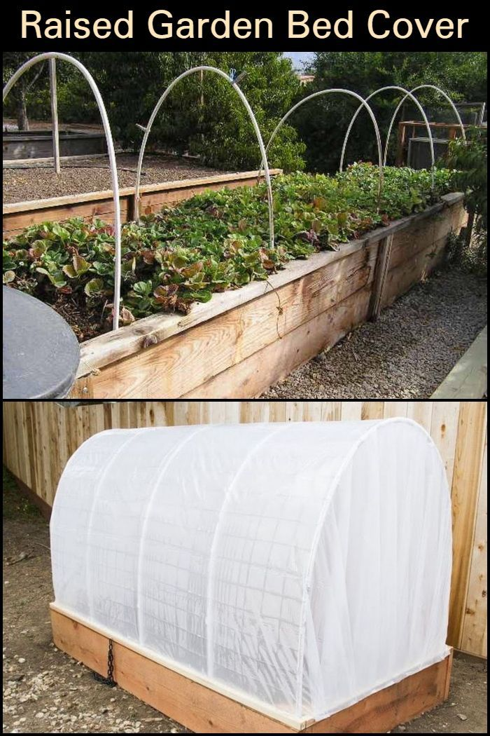 DIY Raised Garden Bed With Cover Ideas for the House