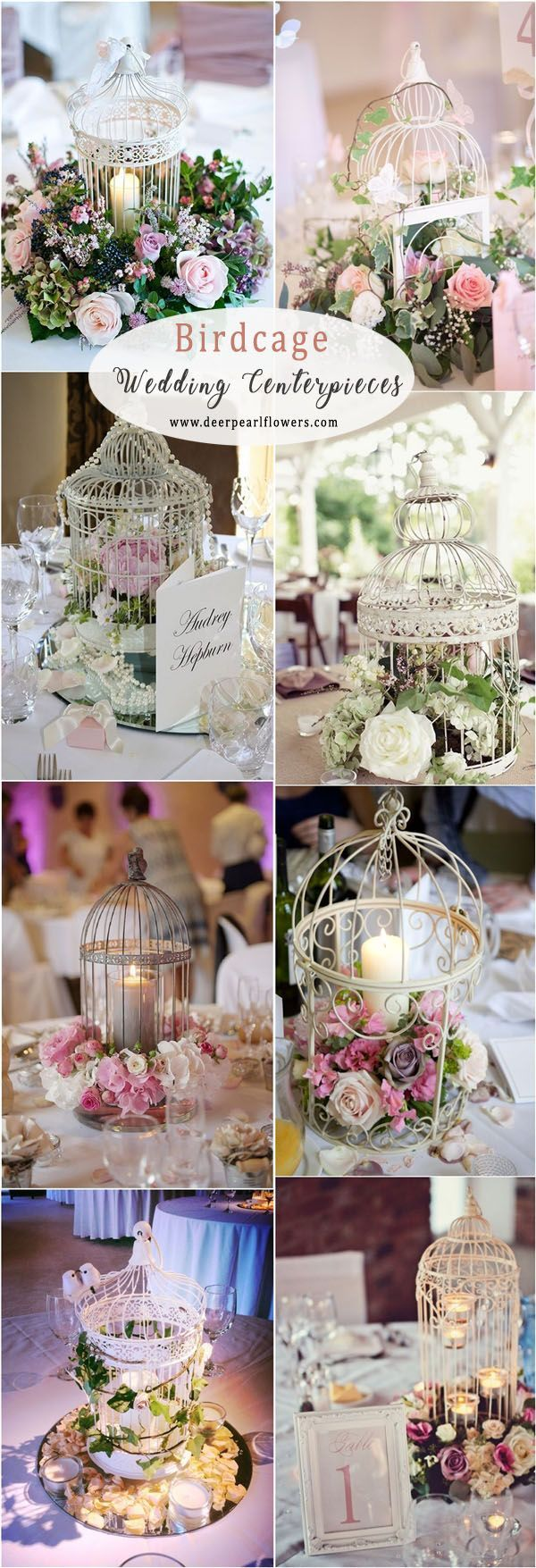 Wedding decorations lilac september 2018 Pin by Sam Bullock on Event center in   Pinterest  Birdcage