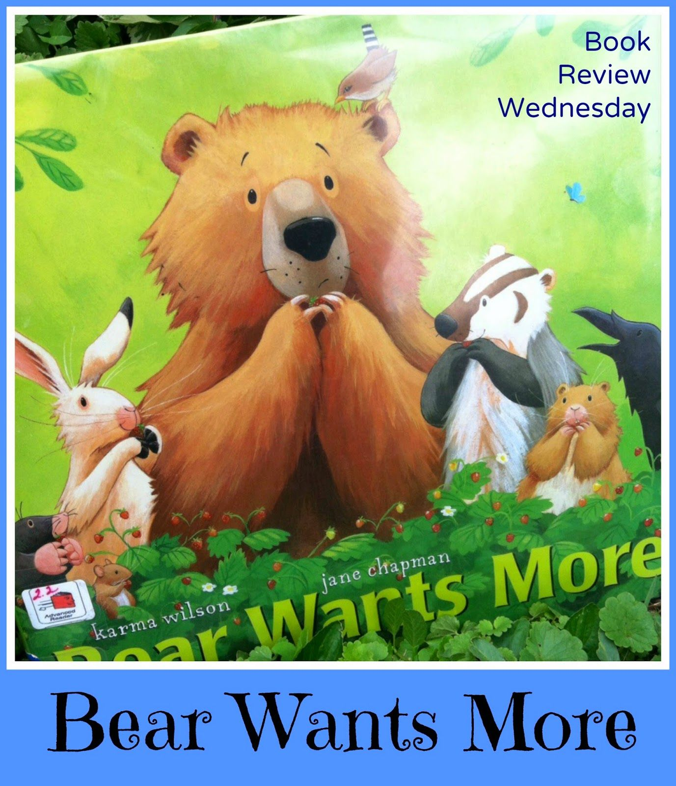 Sunshine By Channon Book Review Wednesday Bear Wants