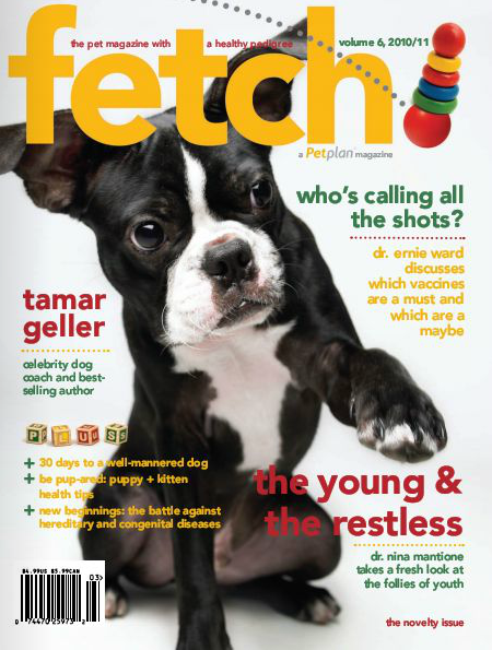 In the Novelty issue of fetch! magazine from Petplan pet