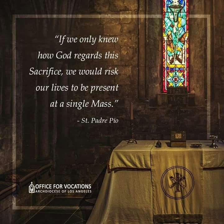 Mother Teresa Quotes On The Eucharist: Seeds For The Soul Semillas