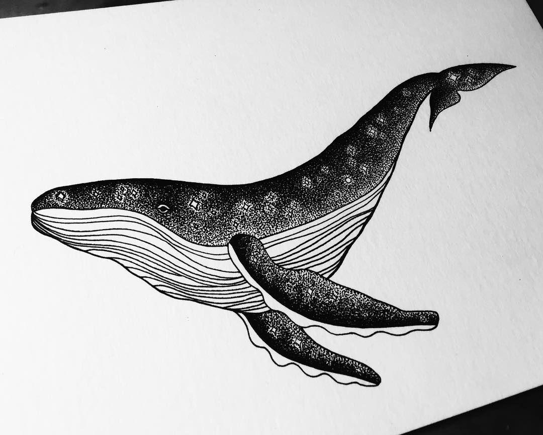 Рисунки черно белые китов