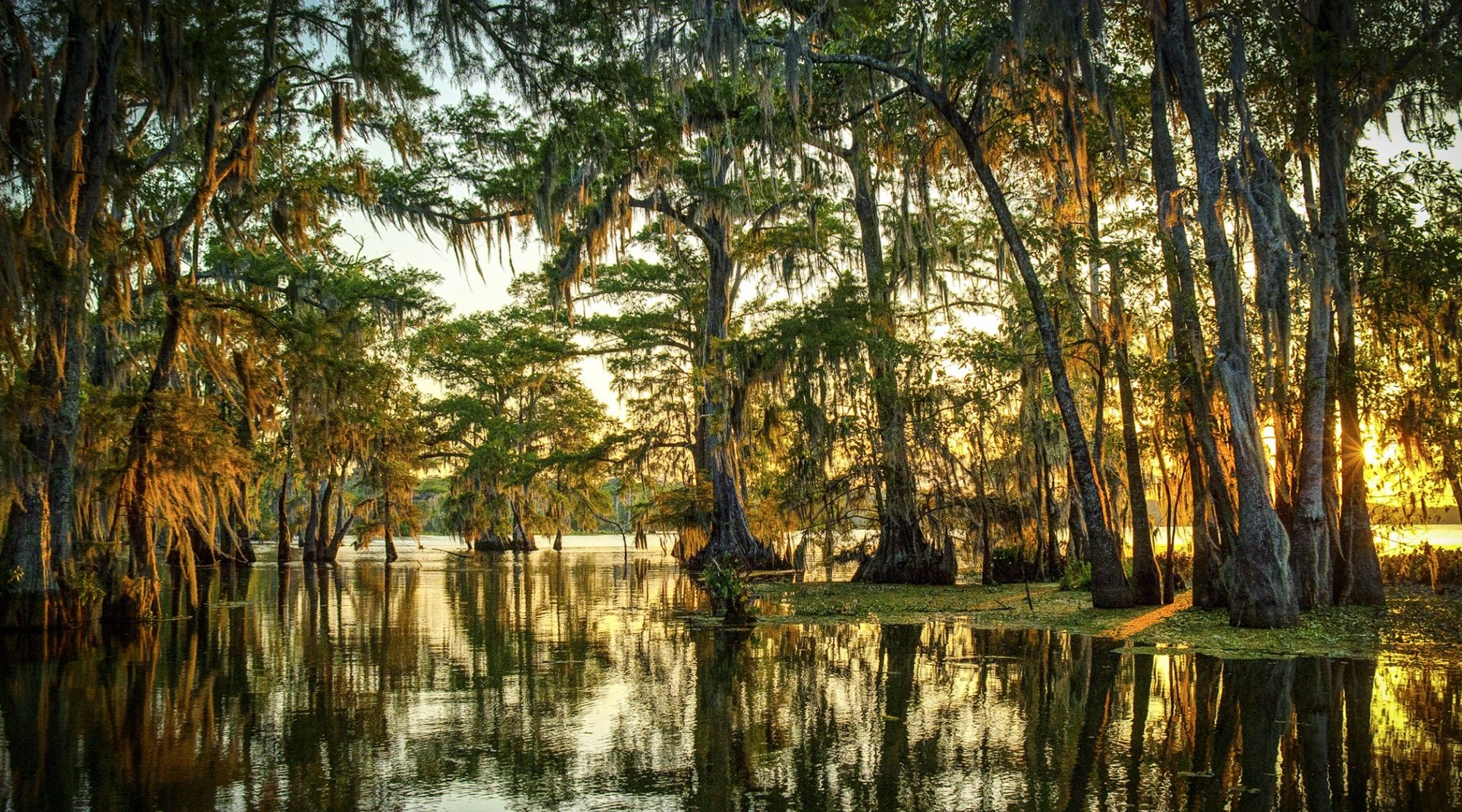 The rhythms of the bayou: Melissa M. Martin's simple, intimate Louisiana cooking