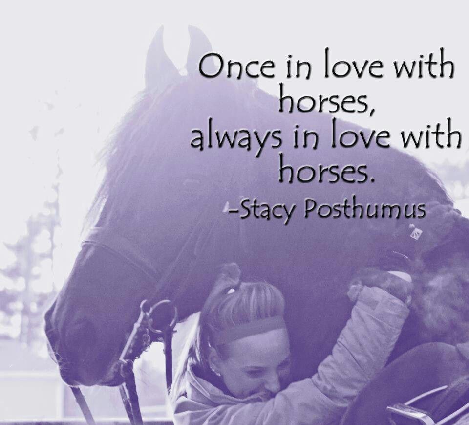 Horse love | Horse Quotes | Pinterest