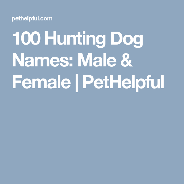 100 Hunting Dog Names Male Female Tough Dog Names Hunting Dog Names Dog Names Male