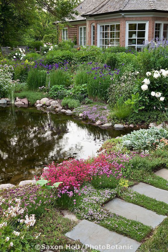 Backyard pond with stepping stone path and perennial garden