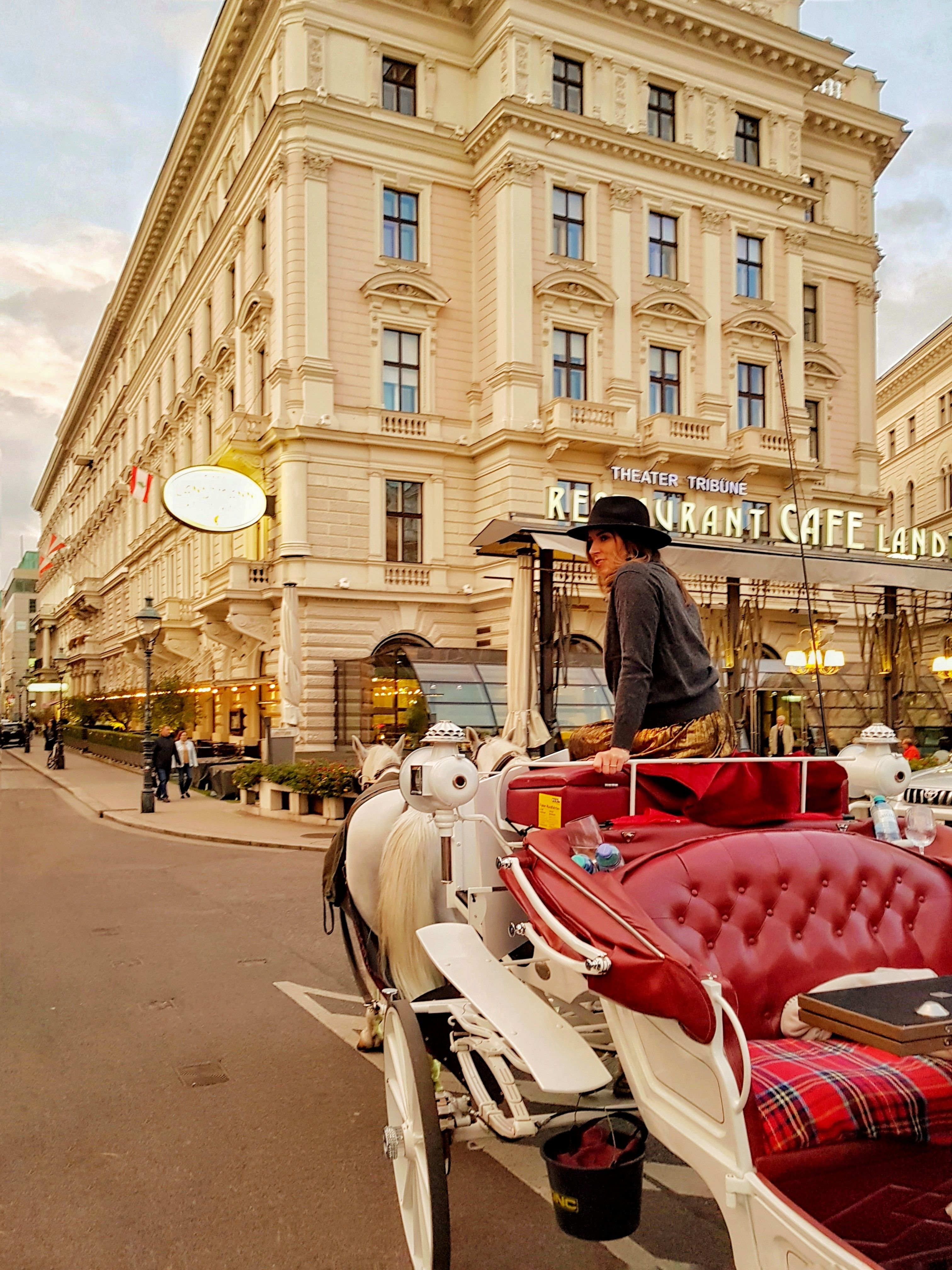 A nightlife guide to vienna
