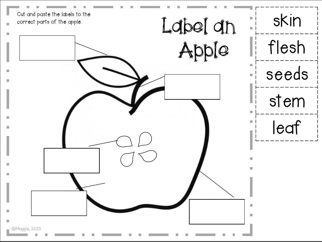 Investigating Apples A Labeling Freebie With Images