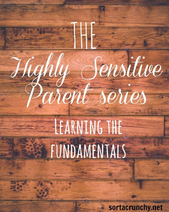 Highy sensitive parent series - learning thé fundamentials