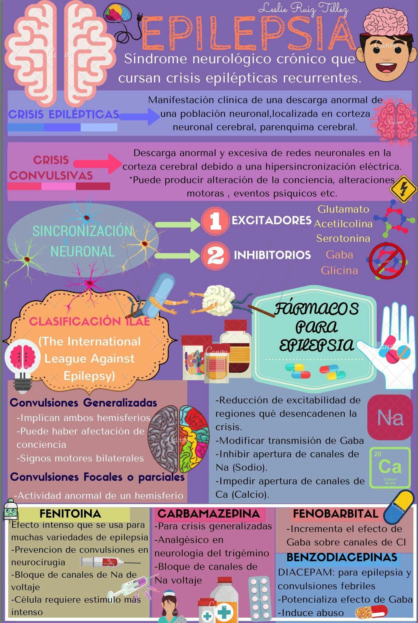Pin de Itzel en Anatomía y Fisiología Humana | Pinterest ...