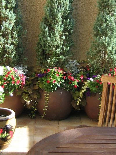 Tuscan Patio Garden   Potted Plants Potted Trees Patio, Tall Potted Plants,  Large Planters