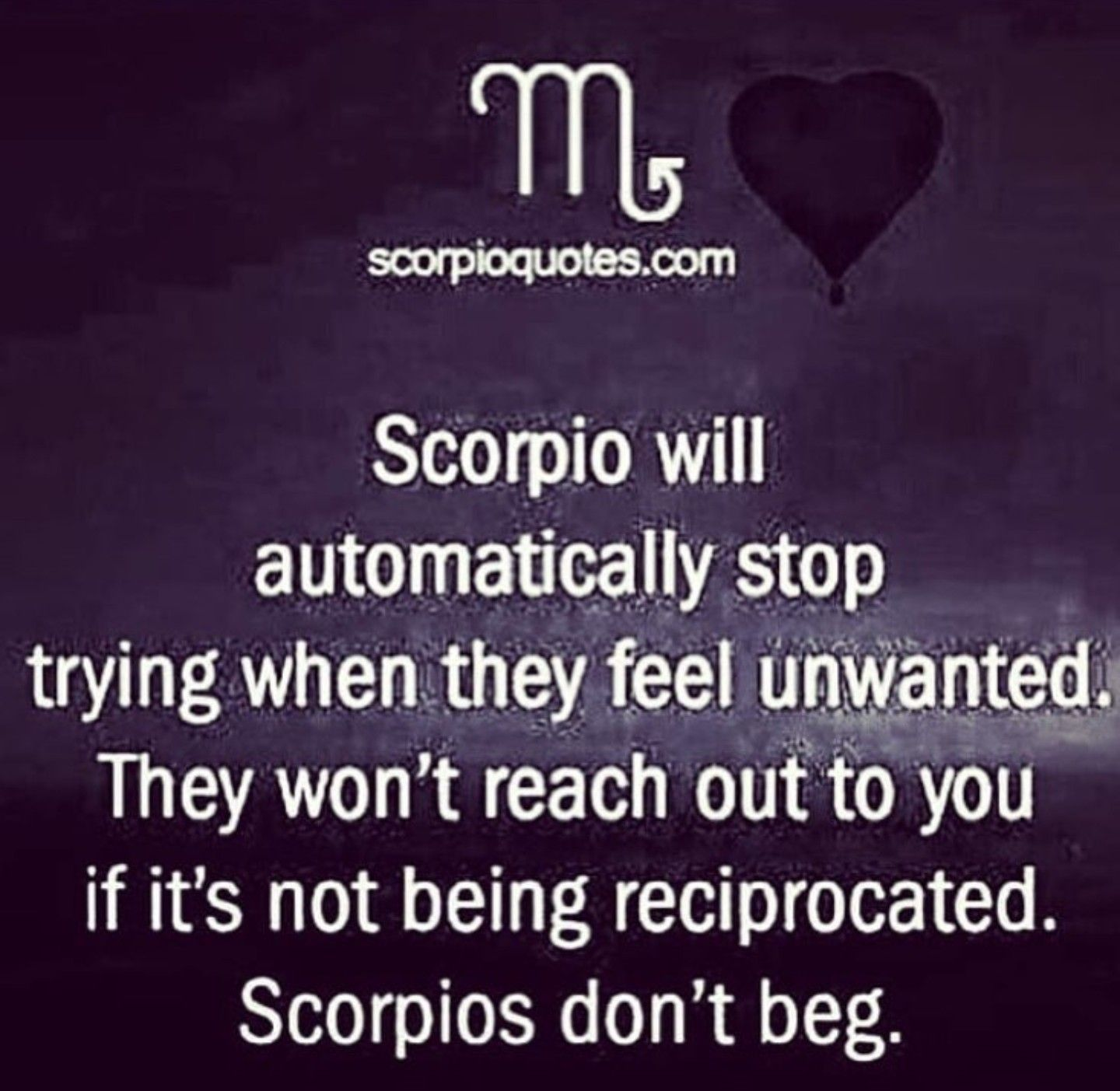 Even If Hurt I Don T Beg With Images Scorpio Zodiac Facts