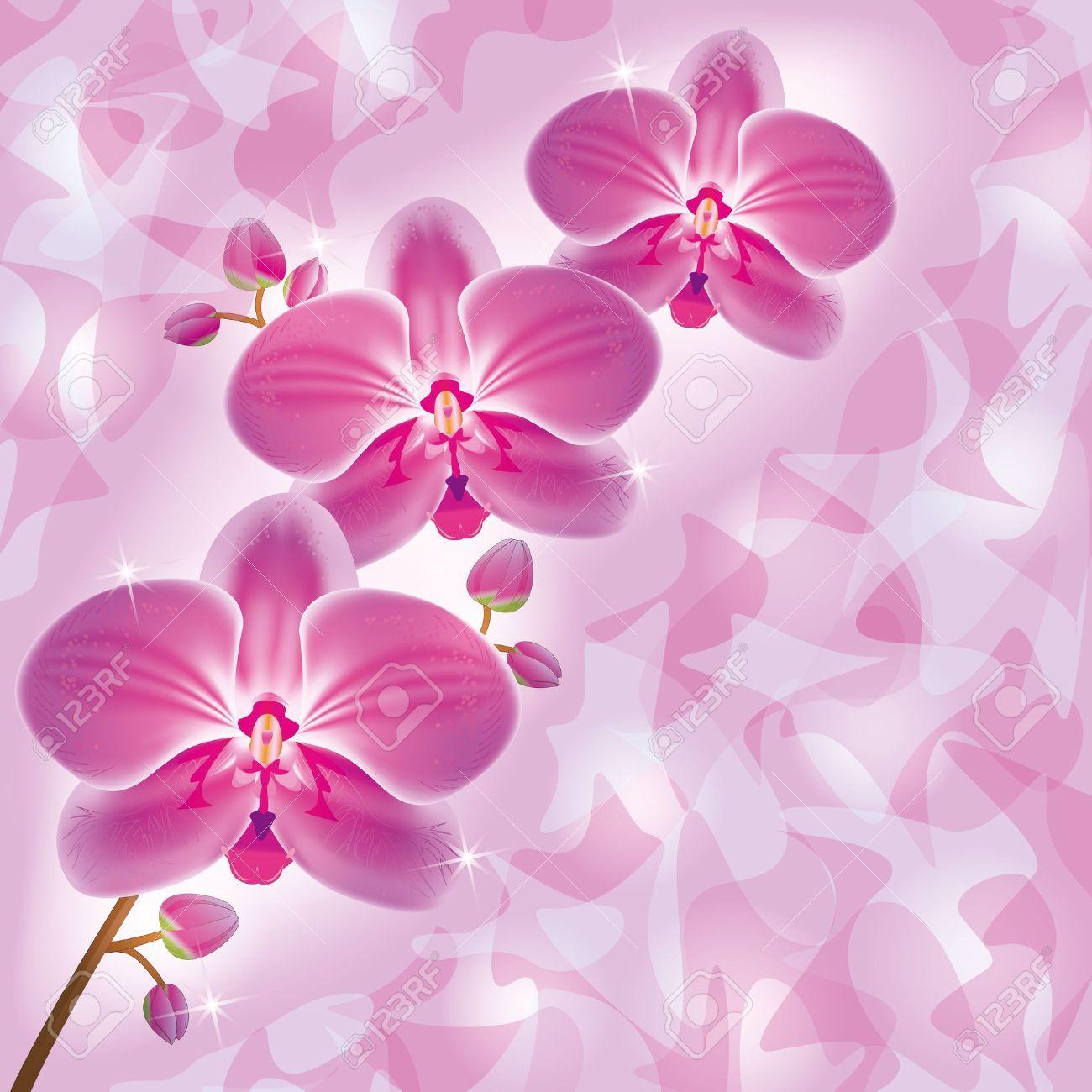 invitation ou carte de voeux avec des fleurs d'orchidée pourpre