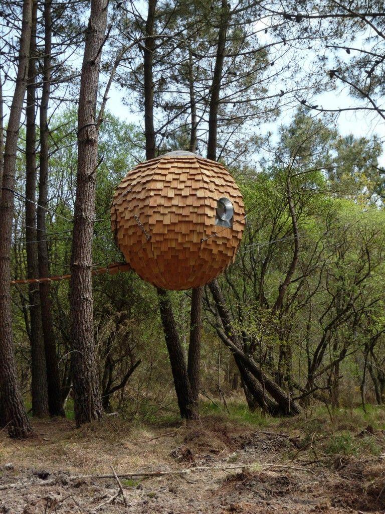 Insolite une bulle pour dormir dans les arbres small - Maison dans les bois ...