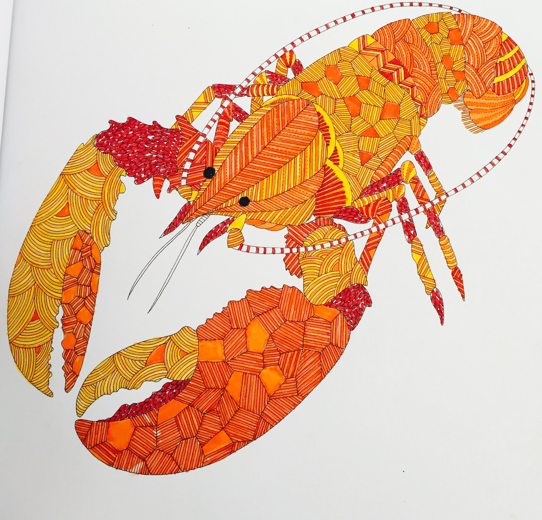 Millie Marotta Animal Kingdom Lobster Using Connector Pens