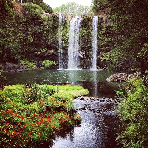 New Zealand North Island Don 39 T Sell It Short Buckets Wanderlust And Beautiful Places