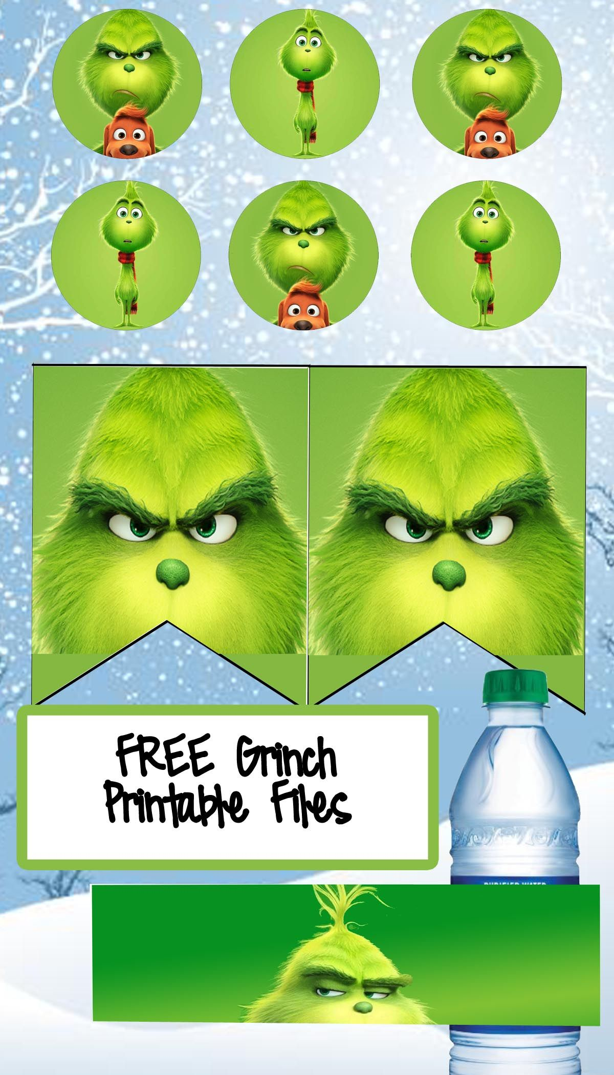 Free The Grinch Birthday Party Printable Files