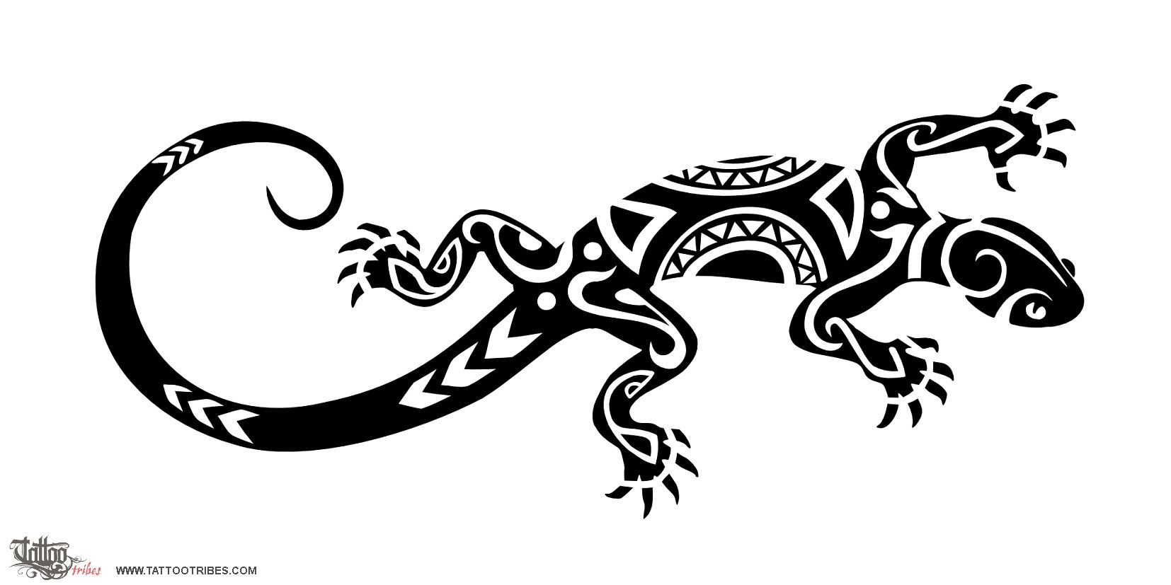 Lizard Lizards Symbolize Good Luck And Are Spiritual Guides