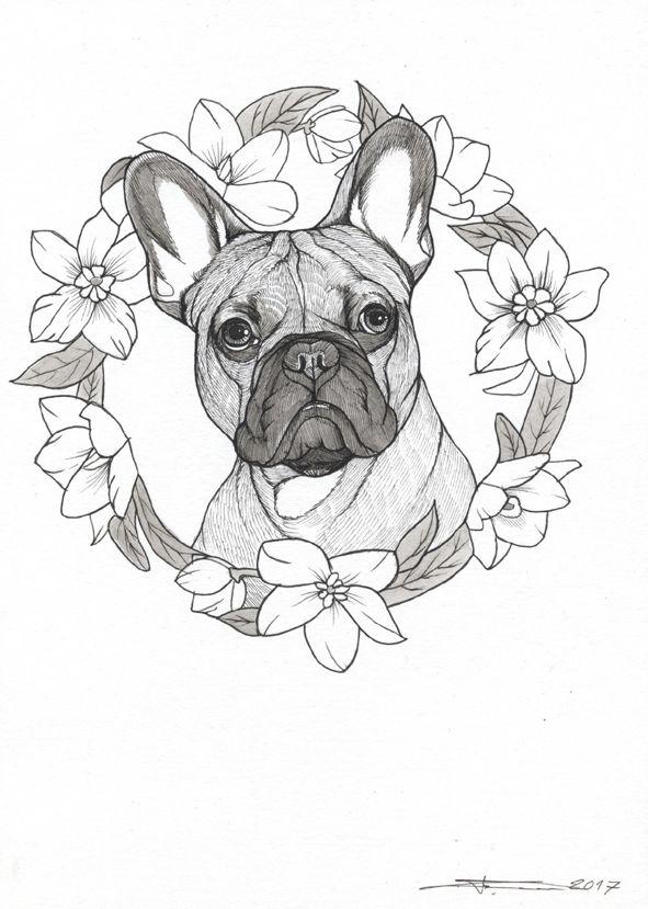Bulldog Francese Da Colorare - Disegni da colorare gratuiti