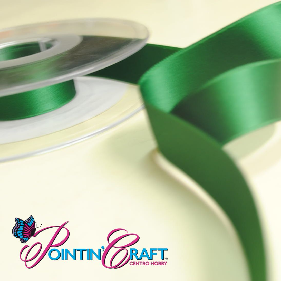 #nastri #nastrini #pointincraft #decorazione #creatività #hobby #faidate #satinato http://www.pointincraft.eu/it/326-nastri