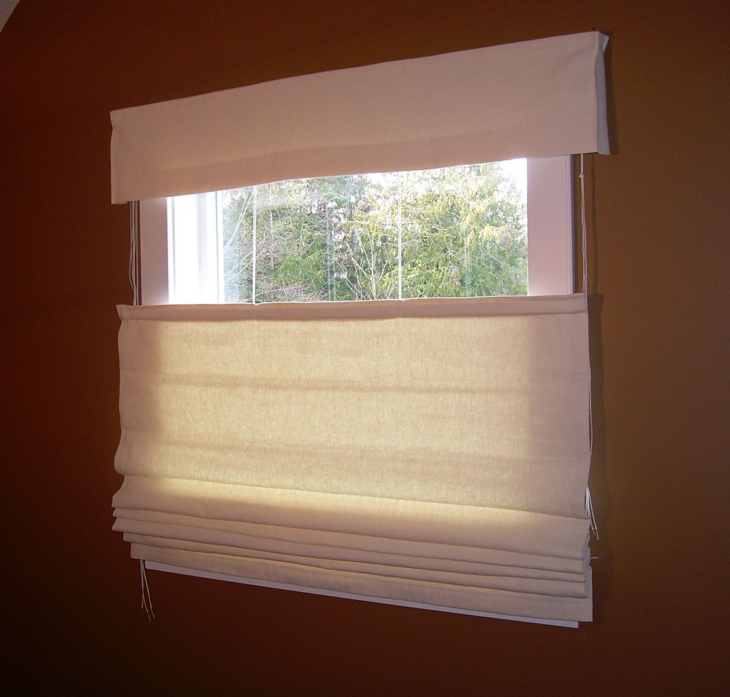 Top down bottom up roman shades organic blinds for Shades and window treatments