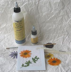 Wonderful How To Use Pressed Dried Flowers For Decoration   Ways To Decorate With Dry  Flower Craft Design Ideas