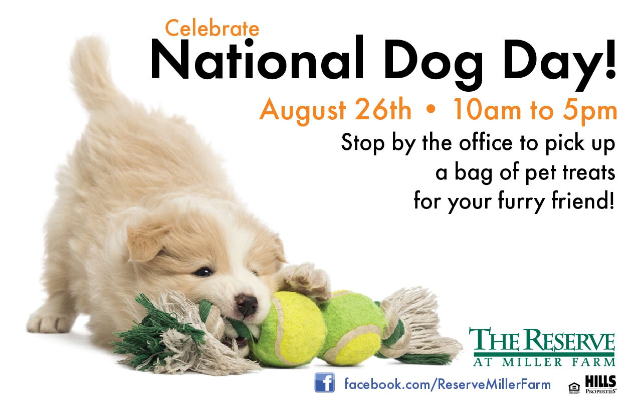 Dog Day Apartment Management Resident Events Ideas Apartments Apartment Marketing