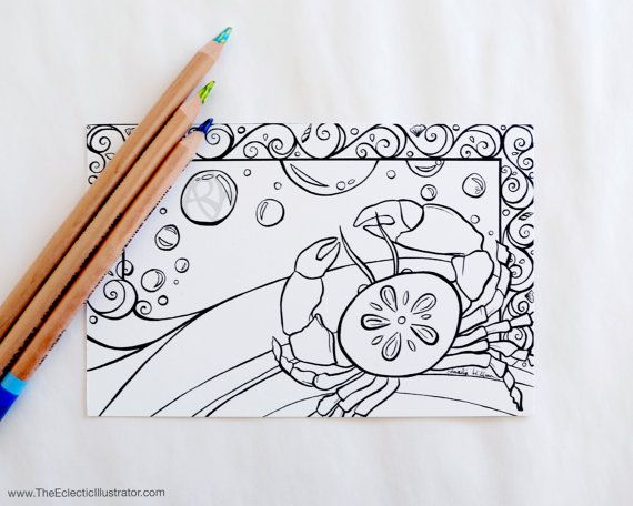 Coloring Book Postcards Set Of 4 Black And White Sand Dollar Etsy Coloring Pages Coloring Books Crab Illustration
