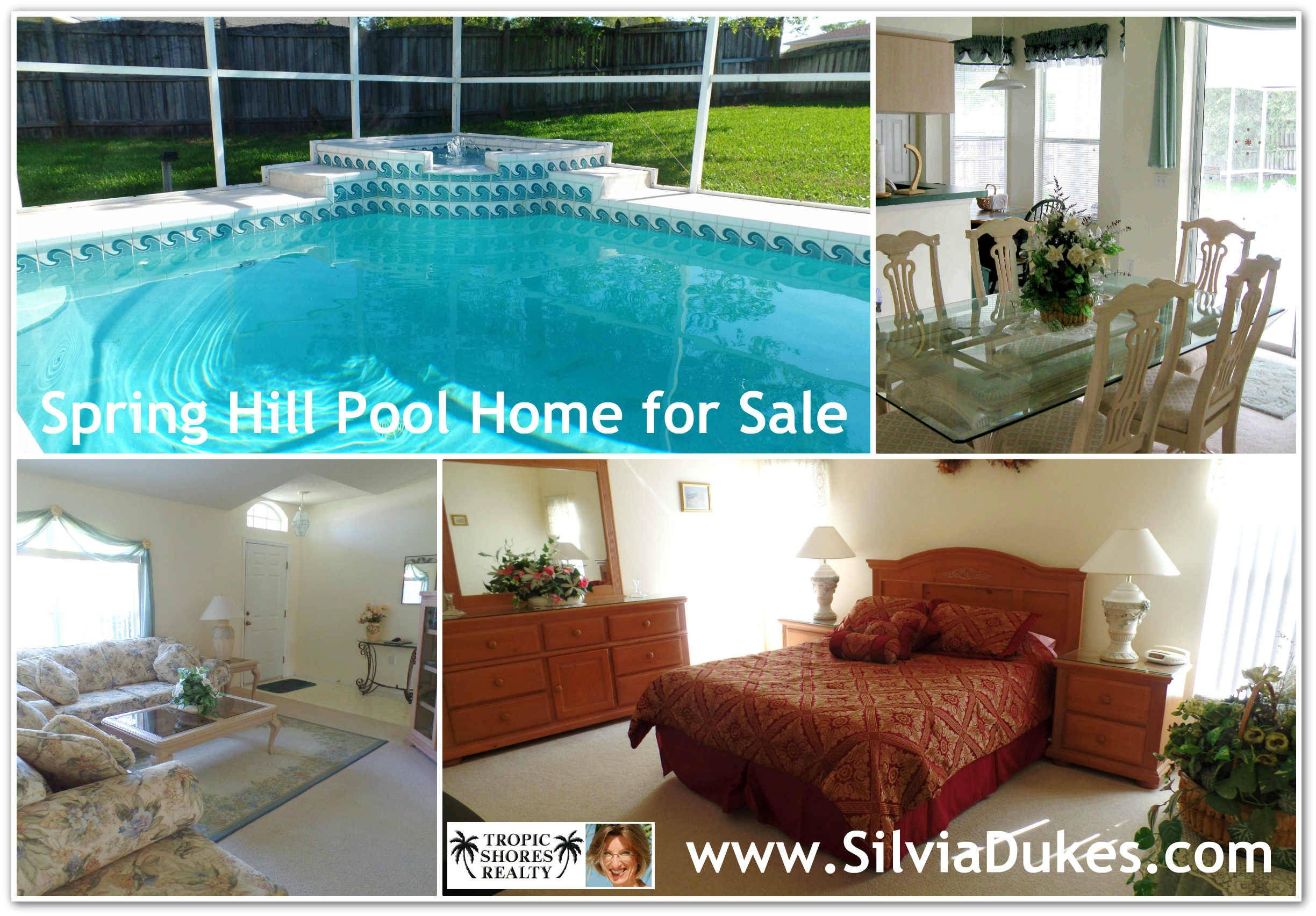 Spring Hill home for sale with solar heated pool by Silvia Dukes