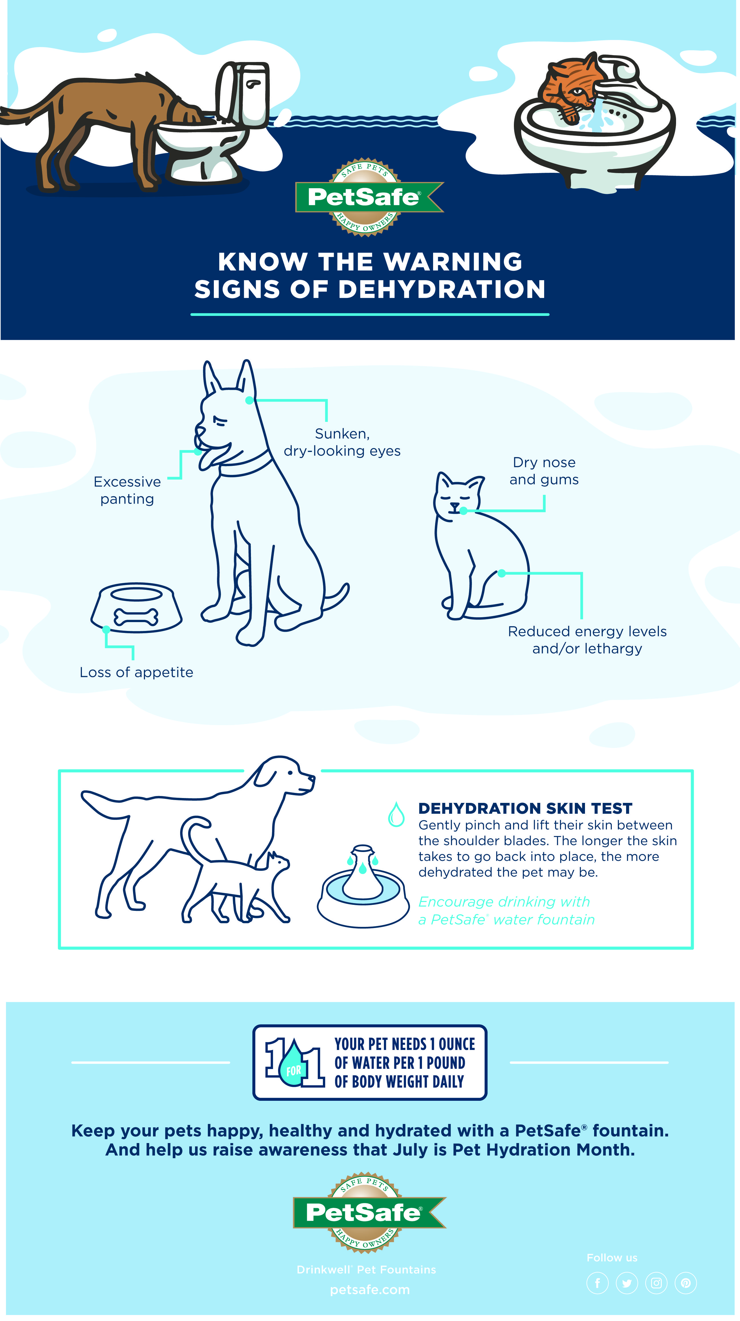 Know The Warning Signs Of Dehydration In Your Pet Signs Of Dehydration Your Pet Pet Health