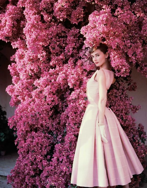 Audrey Hepburn and bougainvillea, Italy, Rome, Italy, 1955 by Norman Parkinson