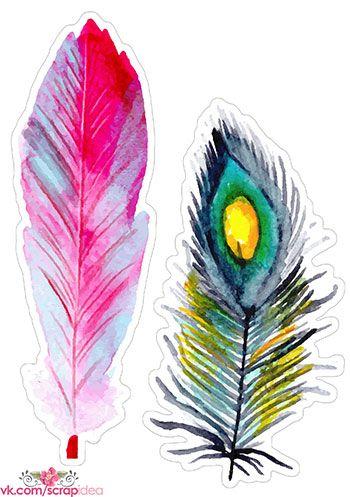 Скрап высечки с перьями (6 шт.) | Скрапинка - дополнительные материалы для распечатки для скрапбукинга