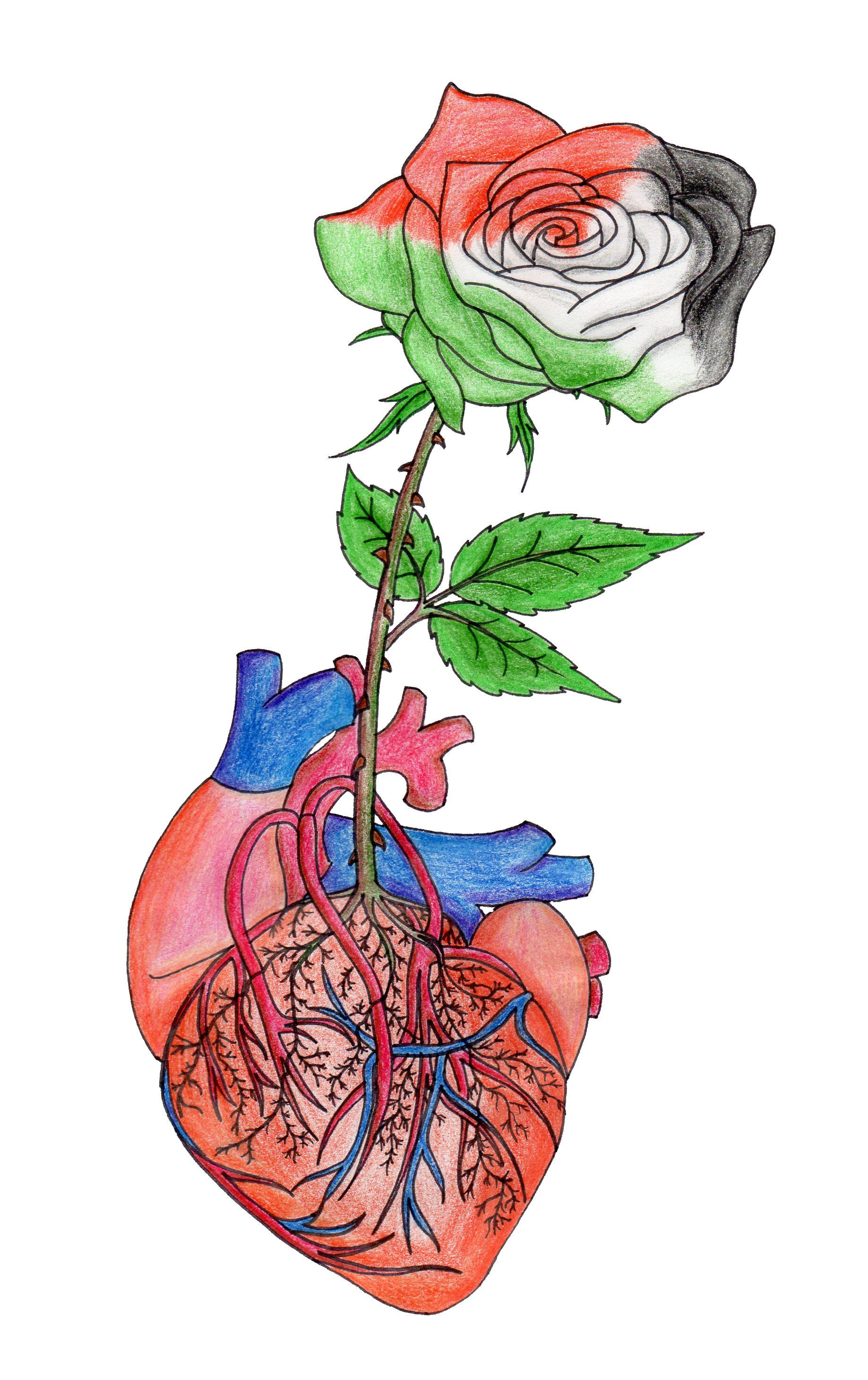 A rose sprouts on my heart... by floatingWhiteFalcon.deviantart.com on @deviantART