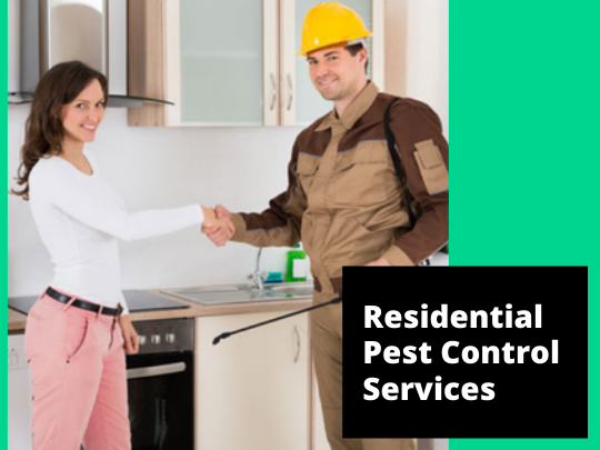 Residential Pest Control Surrey In 2020 Pest Control Services Pest Control Pests