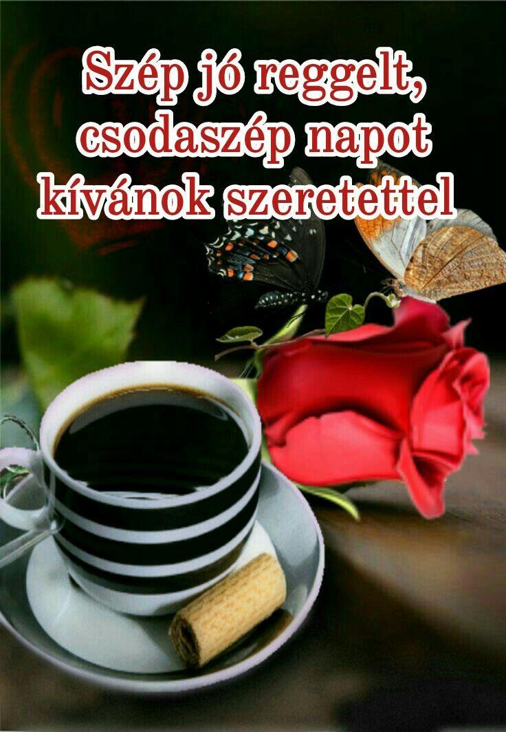 reggeli szép idézetek Jó reggelt | Reggeli, Vicces idézetek a barátságról, Jó reggelt