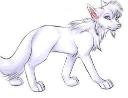 I love this anime wolf. Im gonna draw it. Then I'll take a picture of it and upload it to here.