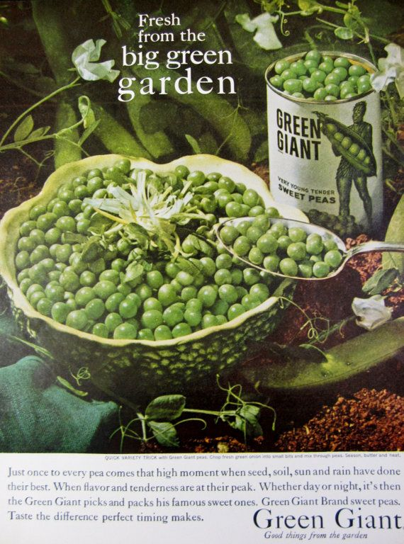 1960 Green Giant Sweet Peas Vintage Adver Kitchen Wall Art By Reliceclectic 7 00