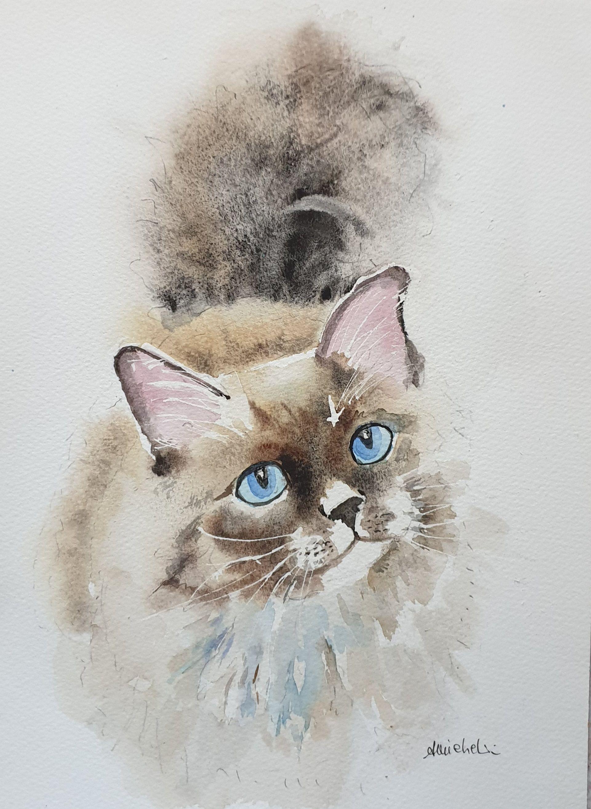 Ritratto Di Gatto Siamese Acquerello Siamese Regalo Gatto Ritratto Occhi Blu Gatto Acquerello Ritratto 9 X12 31x In 2020 Watercolor Cat Cat Artwork Cat Portraits