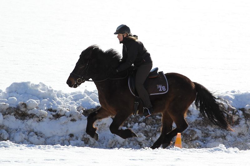 That's me & Högni in our very first gaedingakeppni today 3.3.2011.