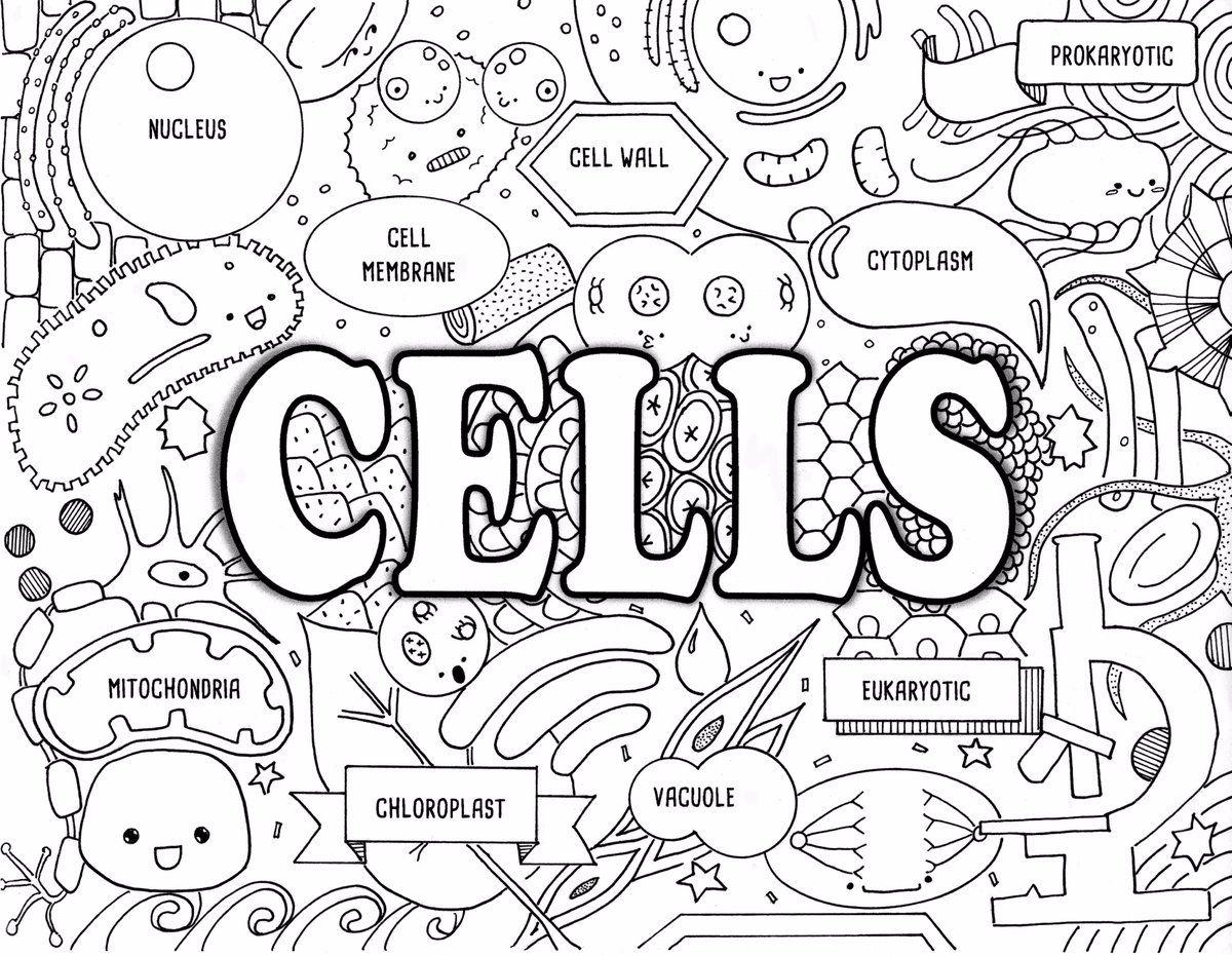 Twitter Science doodles, Doodle pages, Doodles