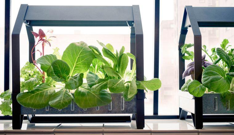 Serre De Jardin La Maison Ideale Pour Vos Plantes En Hiver Serre Jardin Jardins Et Maison Ideale
