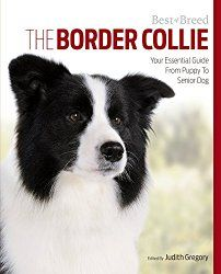 Best Of Breed Judith Gregory Talks Border Collies Collie Dog