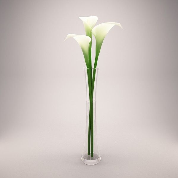For Our Skinny Tall Vase Could Even Be Just One Flower With A
