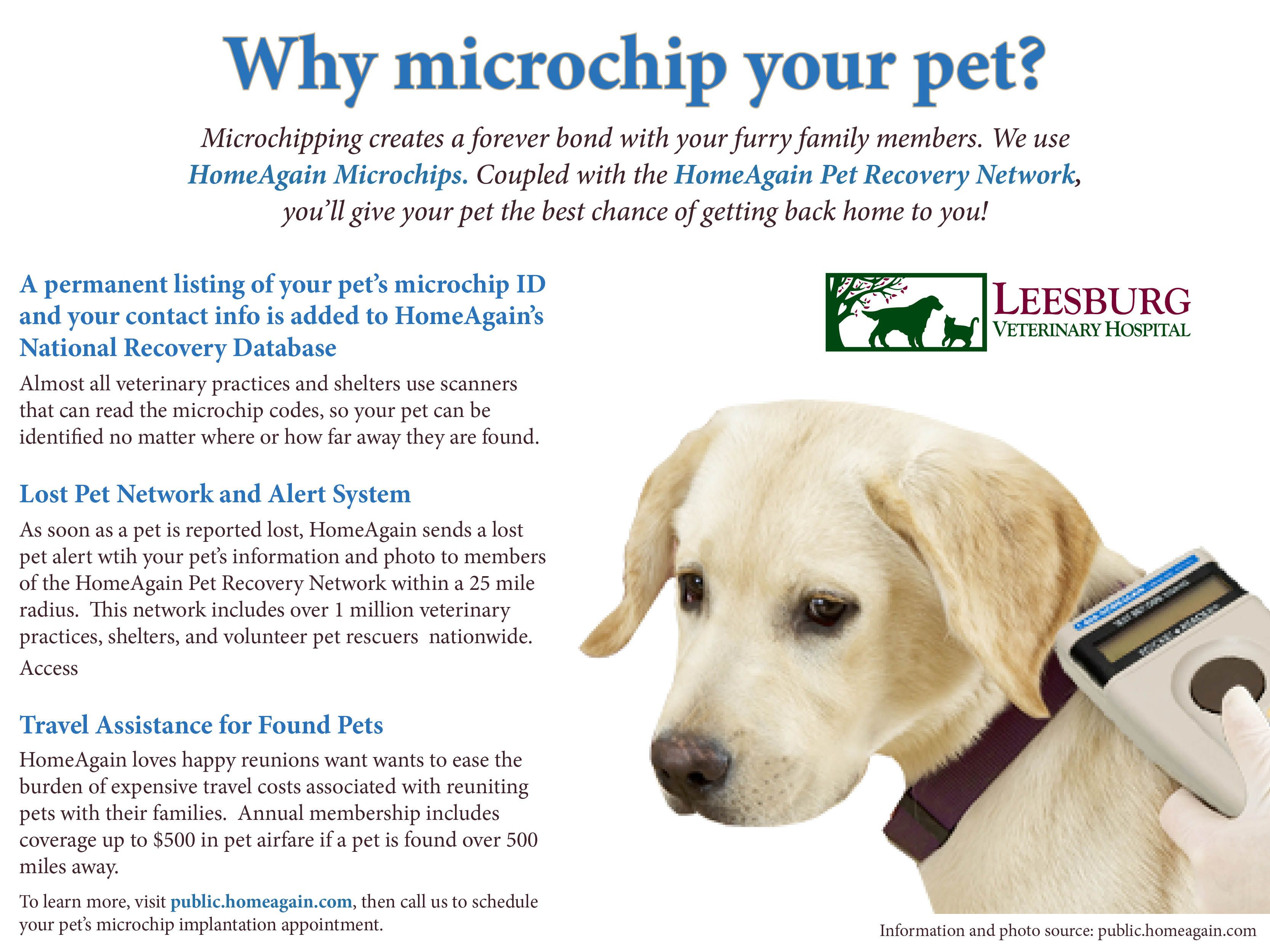 July Is Lost Pet Prevention Month Microchipping Is The Only Permanent Form Of Pet Dentification And The Most Effective In Returning L Pet Id Pets Losing A Pet